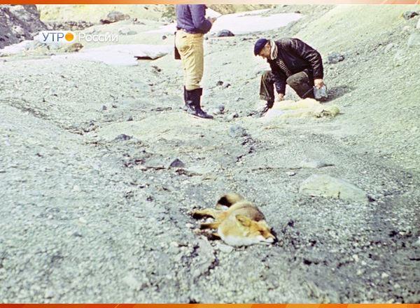 Камчатка: Долина, где умирает все живое