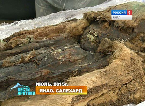 Мумия, найденная на древнем некрополе Зеленый Яр