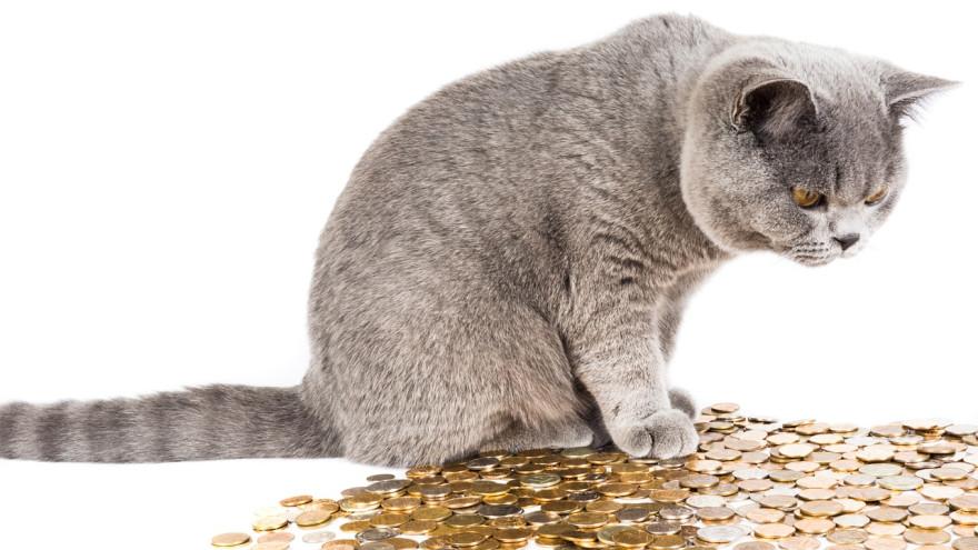 9 привычек от которых мы беднеем