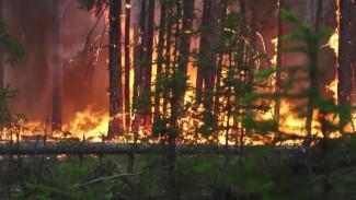 127 лесных пожаров: в Якутии с огнем борются около 2 тысяч человек