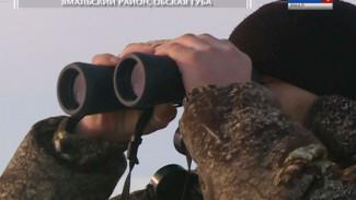 Арктический патруль: как проходят рейды инспекторов по охране биоресурсов на территории Обской губы