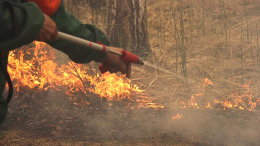 На Ямале огнеборцы тушат природный пожар, площадью около 58 гектаров