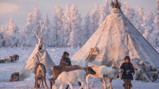 Эксперт - о влиянии экологии на здоровье населения Ямало-Ненецкого автономного округа