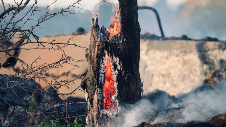 Огнеборцы потушили два лесных пожара на Ямале