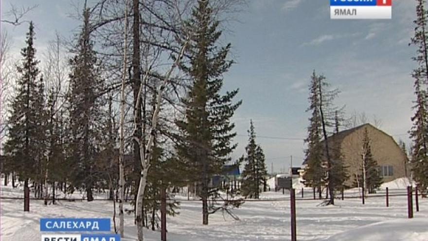 120 многодетных семей Ямала в этом году получили бесплатные земельные участки