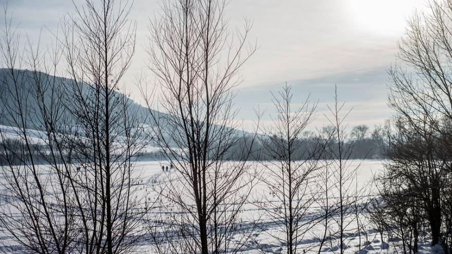 Синоптики: на Ямале ожидается потепление