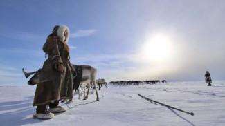 Руководитель центра гидрометеорологии о погодных условиях предстоящей зимы на Ямале