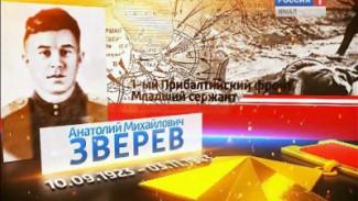 Зверев Анатолий Михайлович, герой Великой Отечественной войны