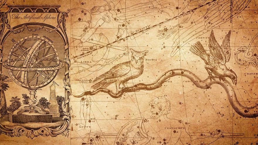 Тотем по гороскопу: какое животное подходит каждому знаку зодиака