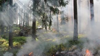 Лето без пожаров: Максим Тютюнник - о том, как специальные службы Ямала готовятся к сезону высоких температур