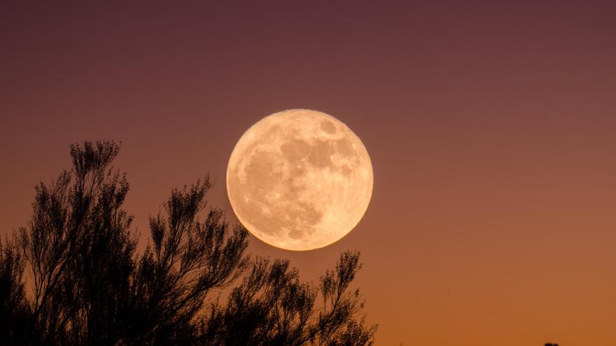Лунный календарь: 7 дней недели для привлечения денег и везения