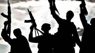 Первоисточник 2.0: Насколько распространены и опасны для современной России террористические секты. Интервью с экспертами
