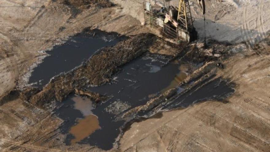На Ямале открыто уголовное дело из-за загрязнения почвы на нефтегазоконденсатном месторождении