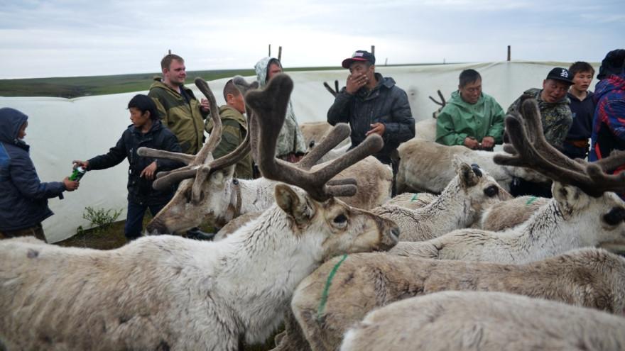 Коренные северные народы получат серьезную поддержку от правительства