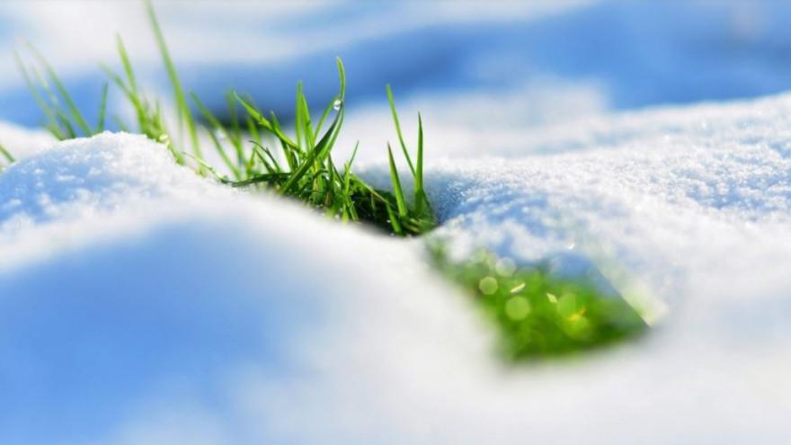 Сюрприз: синоптики рассказали, какой будет погода на Ямале в майские праздники