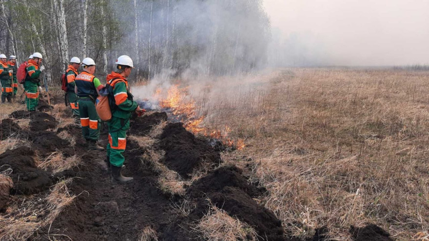 На Ямале спасателям удалось локализовать 2 лесных пожара
