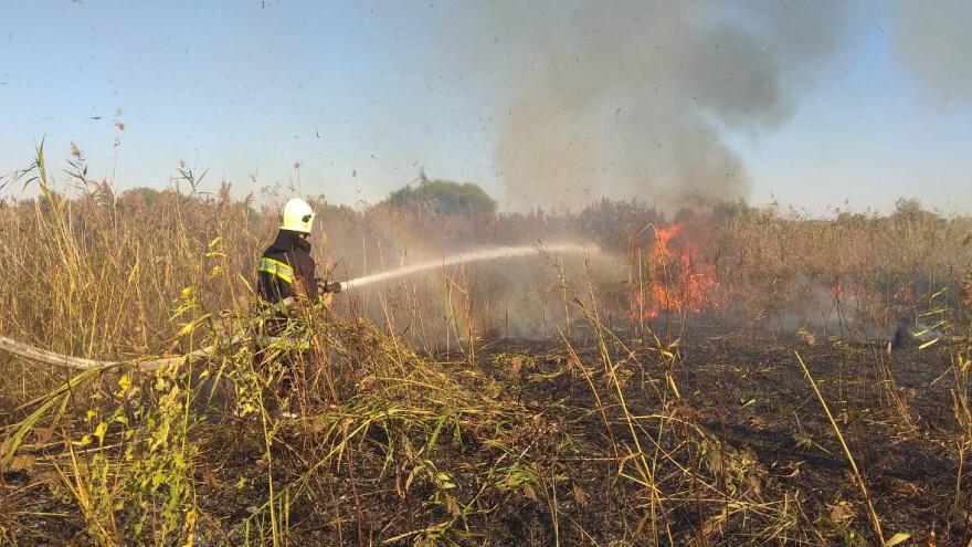 На Ямале действует 3 лесных пожара, 1 локализован