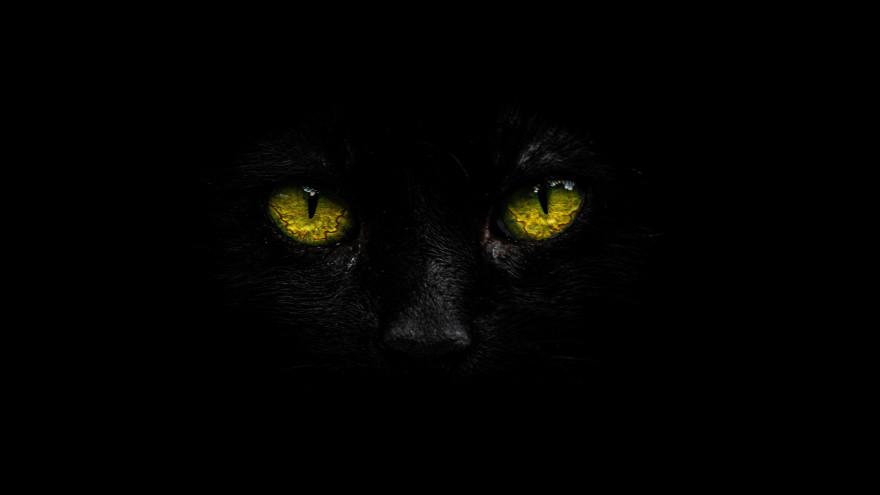 Приметы на 13 августа. Евдокимов день: суеверия в самую опасную пятницу