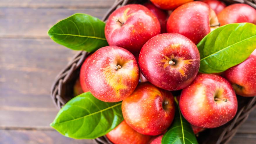 Сушеные яблоки: польза сухофруктов и как приготовить в духовке