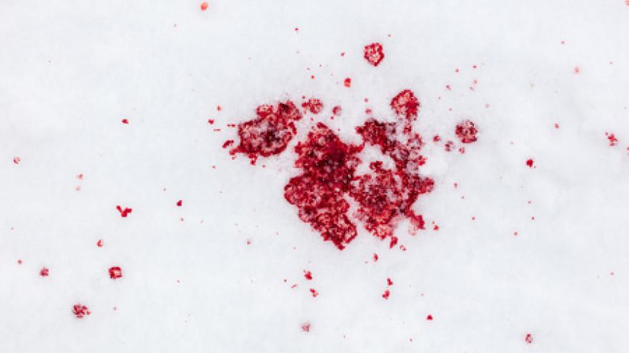 В Тазовском районе тундровик пристрелил друга и повесился