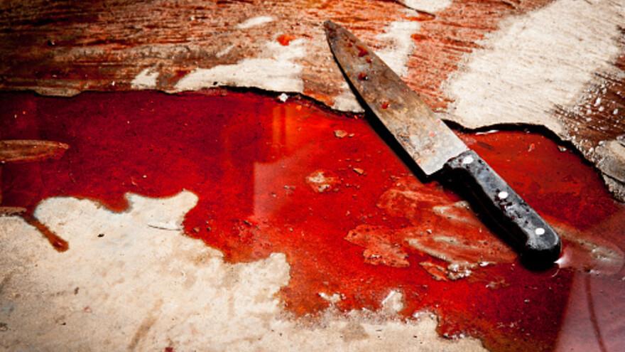 Пьяная поножовщина: на Ямале женщина едва не убила сожителя