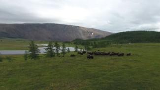 «Арктический патруль» отправился на «Горнохадатинский» участок природного парка «Полярно-Уральский»