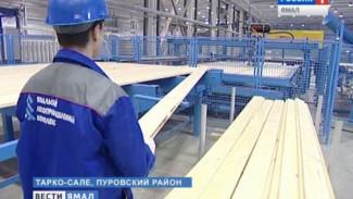 Ямальцам предоставят скидки на покупку домокоплекта в лесопромышленном комплексе Тарко-Сале