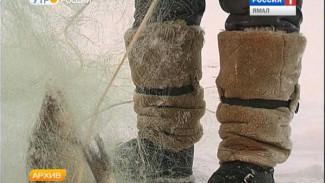 На Ямале активизировались браконьеры