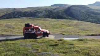 Испытать силу духа и насладиться нетронутой природой. Что туристам предлагает Арктика
