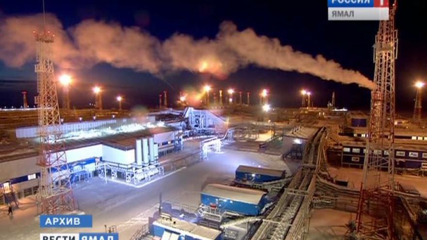 На Ямале в юрских отложениях открыли новую газоконденсатную залежь