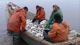 Главный инженер «Тазагрорыбпром» - о династиях рыбаков и традициях старейшей организации Ямала