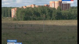 В Тюменской области для многодетных семей Ямала сформировали 155 земельных участков