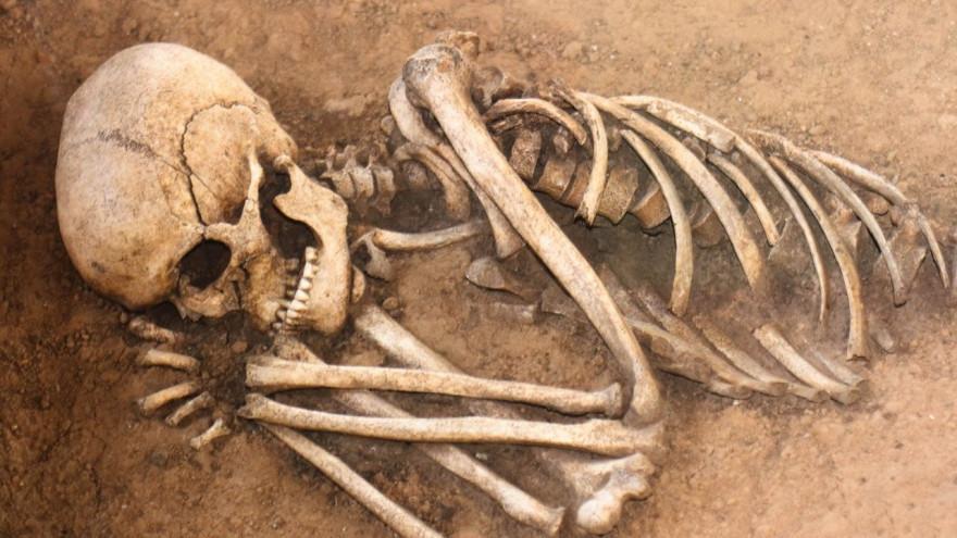 На Ямале в подвале дома нашли человеческие останки