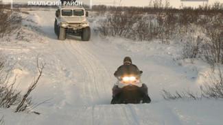 Арктический патруль с Евгенией Любимской. Выпуск восьмой