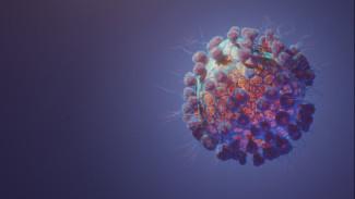 Замглавврача по лечебной части СОКБ - об эпидситуации на Ямале и о прогнозах относительно окончания пандемии COVID-19