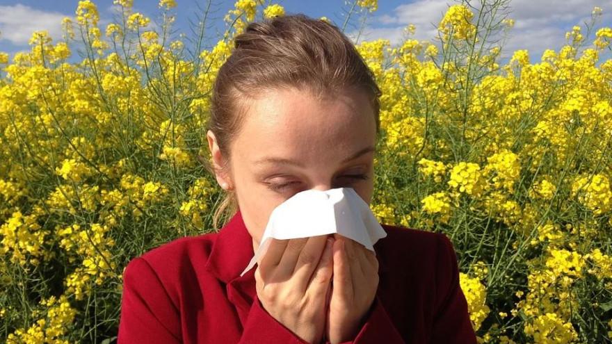 Сезонная аллергия: советы, которые помогут легко пережить весну