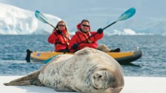 #14 Не гони Пургу: арктический туризм – что может предложить суровый Север любителям путешествий