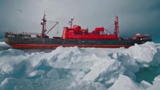 Что изучали ученые на плавучем университете в Арктике, и какие сделали выводы