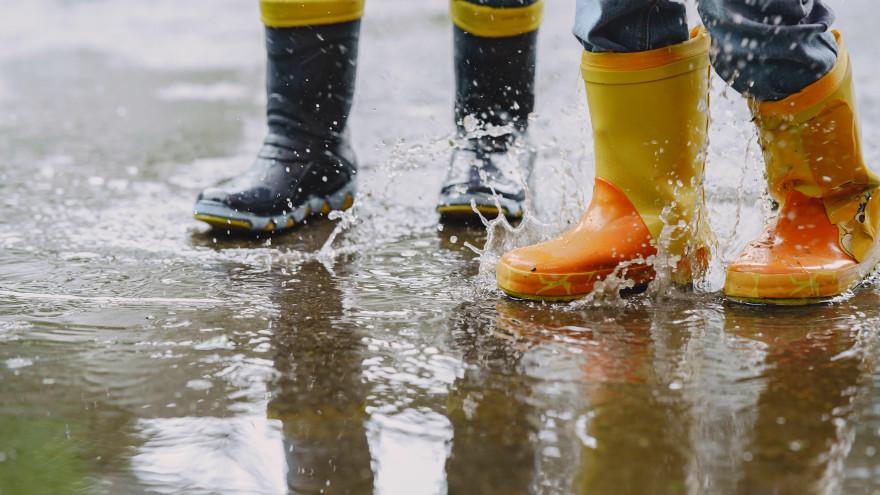 Погода в Салехарде: синоптики обещают дождь с грозой