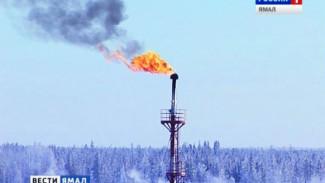 Росстат: в январе Россия увеличила объем добычи нефти и газа