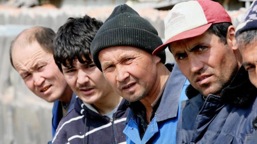 Количество нелегалов выдворяемых из Ямала за границу РФ растёт