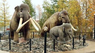 Скверы, парки и детские площадки: до конца октября на Ямале благоустроят 92 объекта
