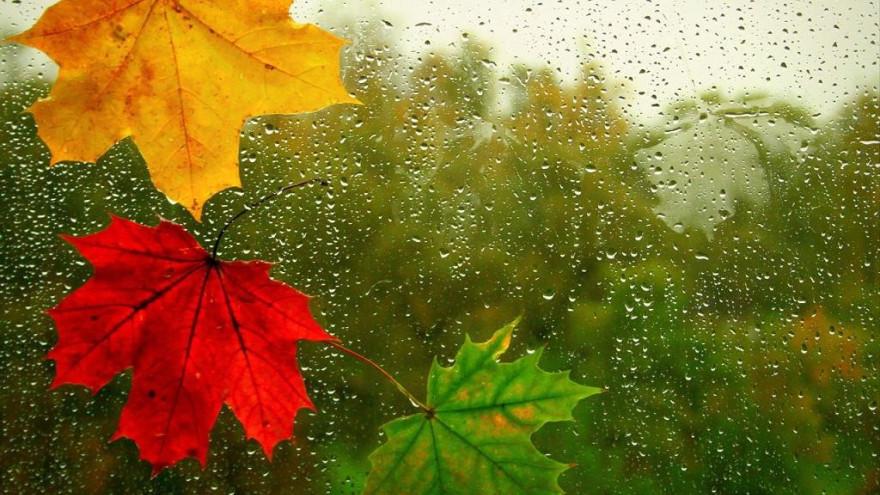 Погода в Салехарде: мелкий дождь и холодный ветер