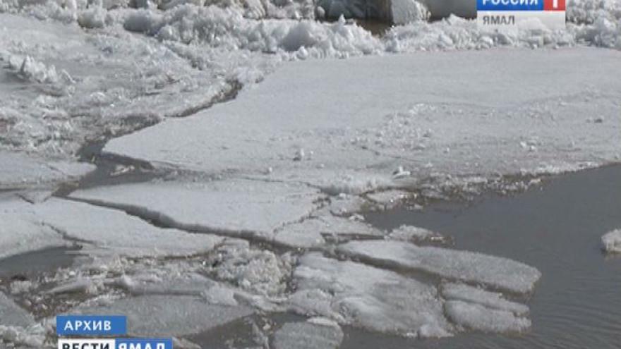 На Ямале завели уголовное дело на водителя снегохода, чей пассажир утонул вместе с санями