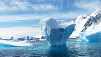 В Москве стартовал Международный Арктический саммит
