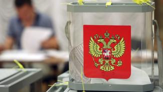 Представитель избиркома рассказал, как проходило голосование на Ямале, и как в нем участвовали болеющие коронавирусом
