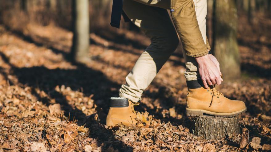 Приметы на 4 сентября: почему на Агафона Огуменника опасно ходить в лес