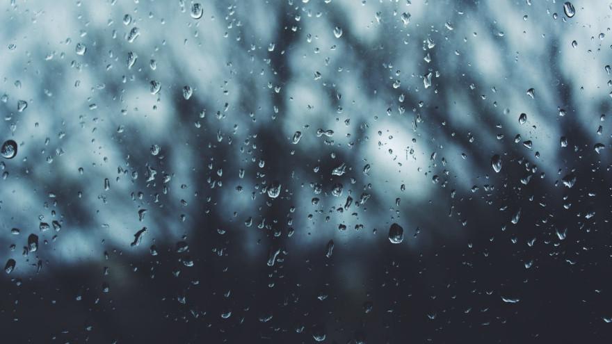 Погода на Ямале: суббота будет по-весеннему дождливой