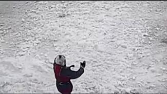 Уголовная статья и штраф: в Губкинском наказали сотрудницу УК за сход снега на ребёнка