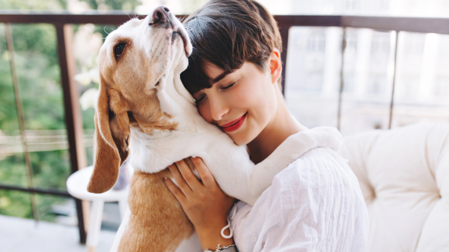 Учёные рассказали о пользе собак для здоровья человека
